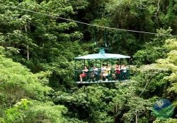 Aerial Tram with Rainforest Adventure