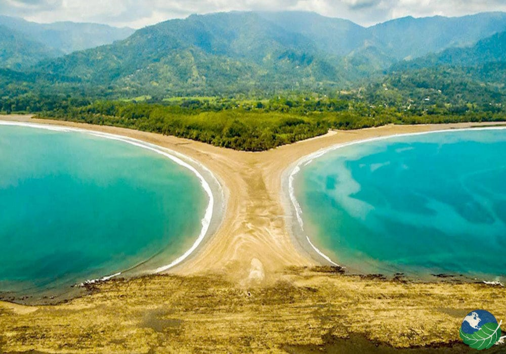Uvita Costa Rica Beach Whales And An Iconic Music Festival