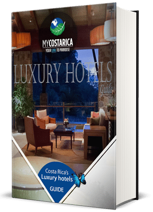 Luxury PDF Front Cover