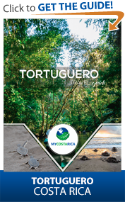 Download the Tortuguero Guide